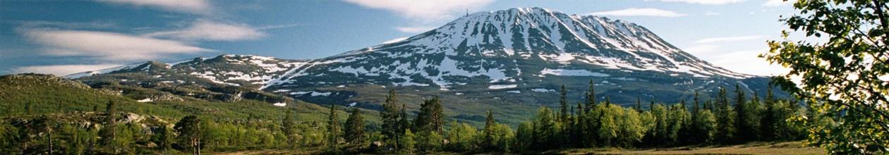 Telemark historielag